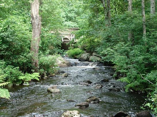 Visit Step Stone Falls located on Falls River Road