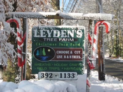 Leyden's Tree Farm& Winery