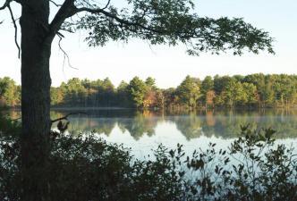 Tillinghast Pond Management Area